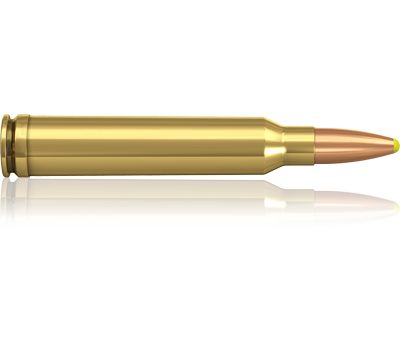Norma kal. 300 Win Mag, PPDC